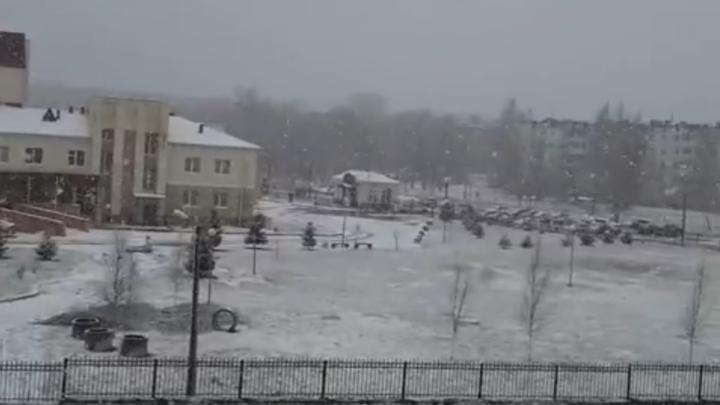 «Апрель забыл, что он не зима»: Ленобласть засыпало снегом