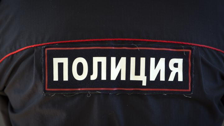 Подравшегося с машинистом в Москве главу полиции Омска уволили – пресс-служба