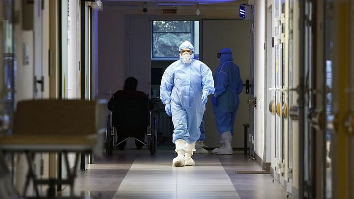 +239 заболевших: COVID-19 выявили в 27 районах Кубани