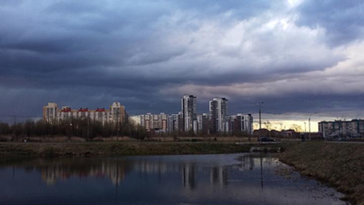 Администрация Тольятти раскрыла информацию о мероприятиях в рамках экологического надзора