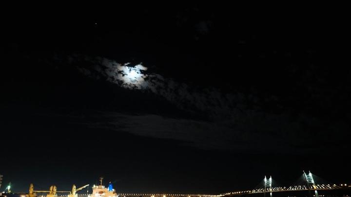 В Санкт-Петербурге не будут разводить мосты в ночь с 4 на 5 ноября