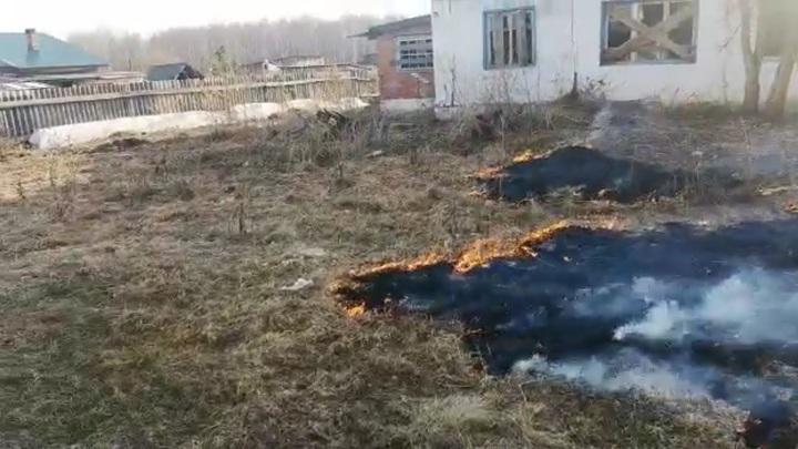 Жителям Новосибирской области запретят ходить в лес с 30 апреля по 10 мая
