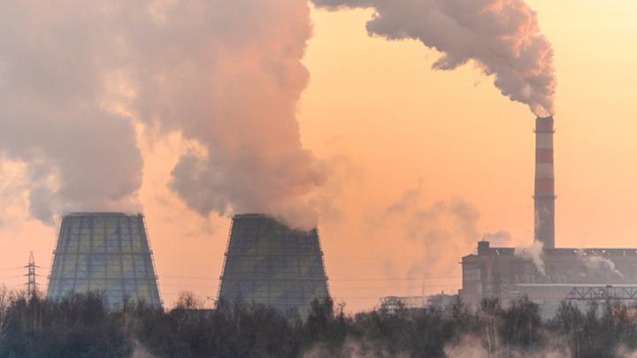 Экологическая катастрофа в России может стать политическим фактором