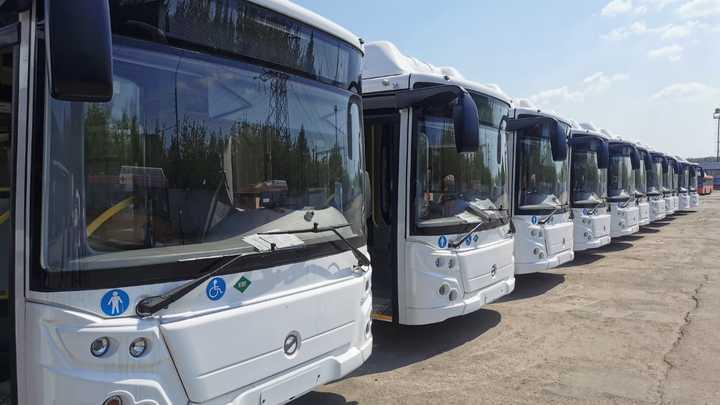Два десятка новых автобусов ЛиАЗ выйдут на улицы Нижнего Новгорода в начале июля