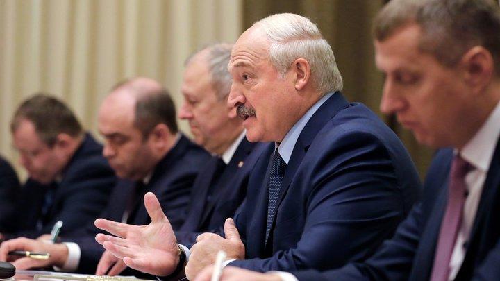Не просто выпихнуть, а продать: Лукашенко спрогнозировал высокий спрос на картошку