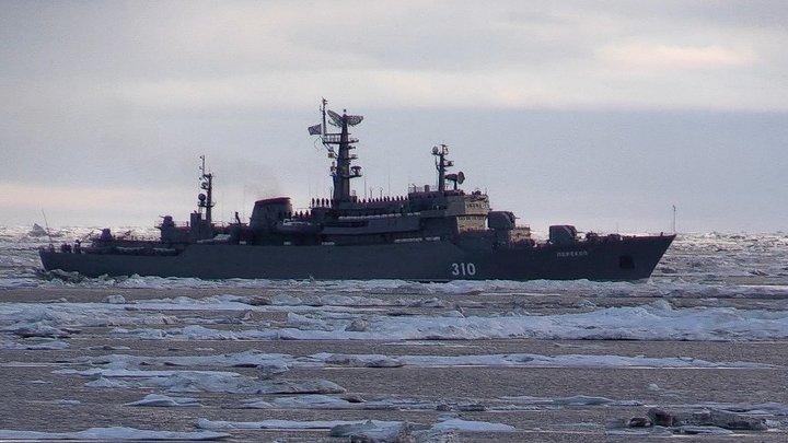 Новые ЗРК помогут России отстоять ценные ресурсы в Арктике - Focus