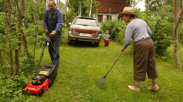 Костромская резня газонокосилкой: Дворники атакуют