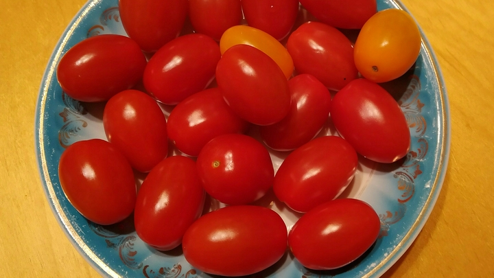 Нужно есть регулярно: Учёные перечислили волшебные свойства помидоров