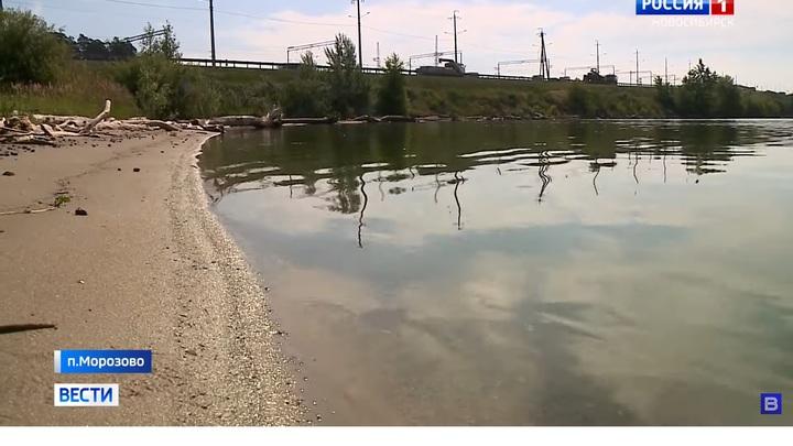Роспотребнадзор раскрыл тайну зелёной жижи в реке Бердь под Новосибирском