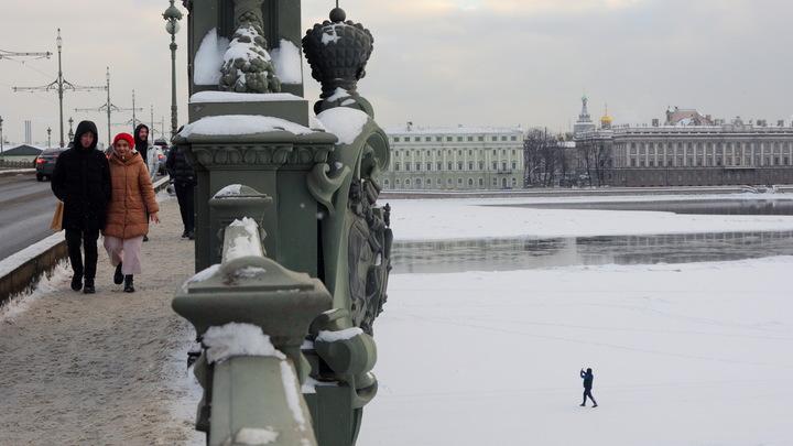 Новое ТО и продление дачной амнистии: что изменится с 1 марта в Петербурге
