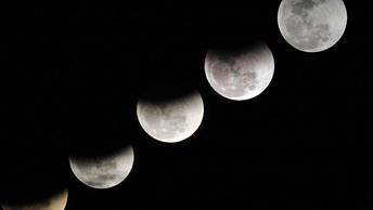 Жители Земли смогли увидеть затмение красной суперлуны