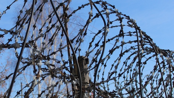 Хулиганки по жизни: что известно о банде школьниц, жестоко избивших сверстницу на Дону