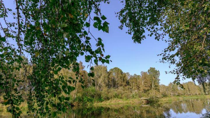 Нашли аммиак: в озере Тургояк запретили купаться