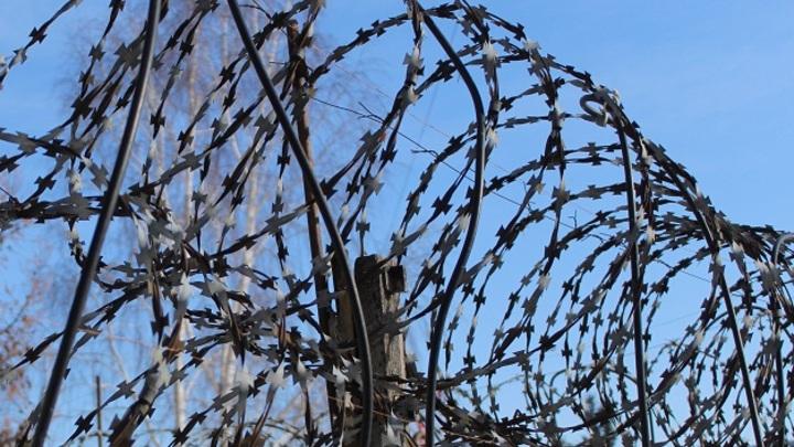 Колючка от мигрантов не спасает, но дает время пограничникам Литвы
