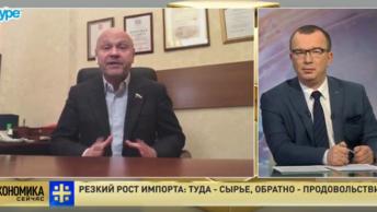 Эксперт о росте импорта в РФ: Мы даже не можем удовлетворить внутренние потребности