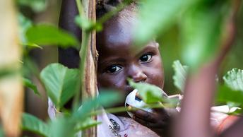 Православная Уганда просит о помощи