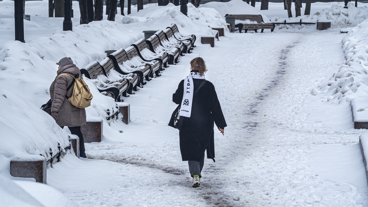 Приход весны задерживается: в Петербурге буйствует северо-западный ветер со снегом