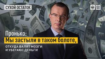 Пронько: Мы застыли в таком болоте, откуда валят мозги и убегают деньги