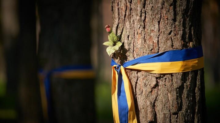 Подготовленная операция: Киевский серый кардинал рассказал о крымском плане Путина
