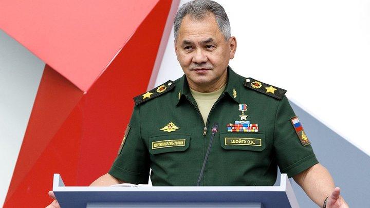 Шойгу: Российским военным понадобилось всего три года для полного разгрома ИГ*