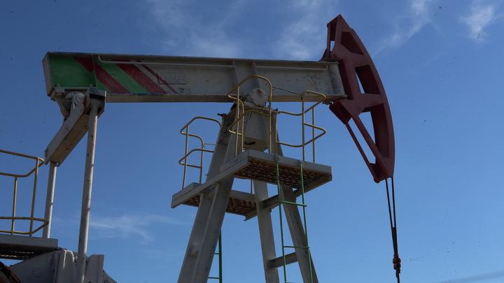 Будущее прекрасно до середины века: Почему российской нефтянке не страшны черные лебеди