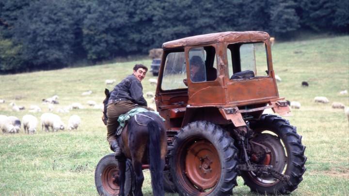 В Молдове ударили по фермерам: стоимость дизеля резко возросла