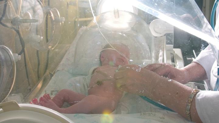 Версия следователей абсурдна: Медэксперты не верят в убийство врачом новорожденного в Калининграде