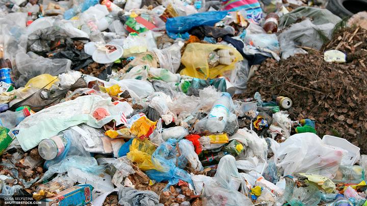 Экологи из России очистят от мусора Землю Франца-Иосифа