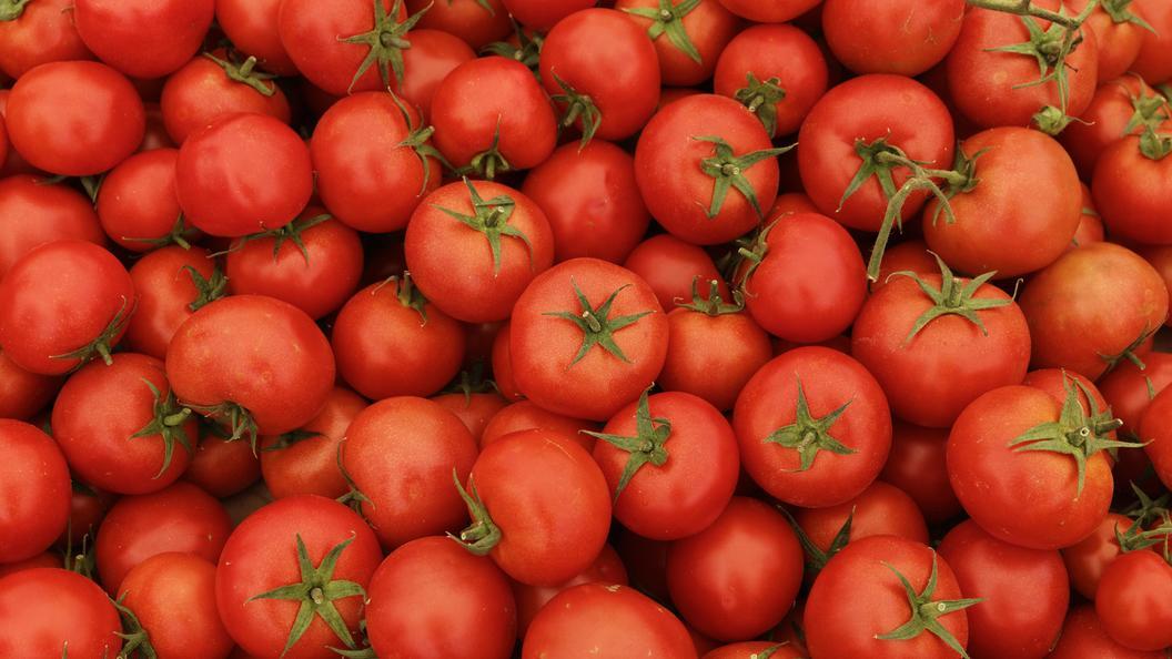 Ввоз томатов разрешён: Россельхознадзор проверил еще 4 учреждения Турции
