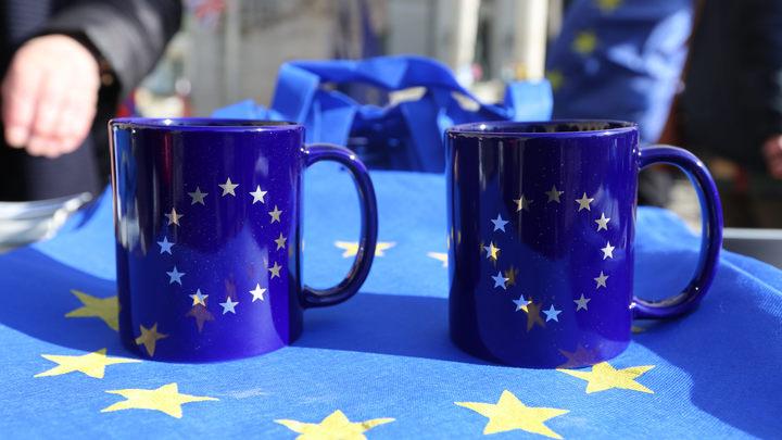 ЕС увидел нарушение международного права в признании Сирией независимости Абхазии
