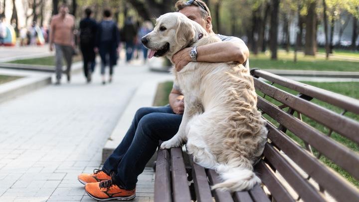 На Кубани от COVID-19 начнут вакцинировать домашних животных