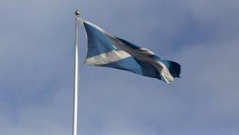 В Шотландии найдена братская могила воспитанников детского приюта