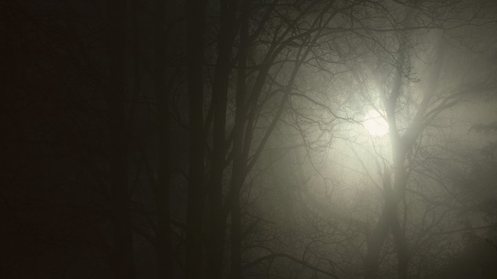 Это просто страшный сон: Кожевникову ужаснула поддержка соведущим Малышевой идей каннибализма