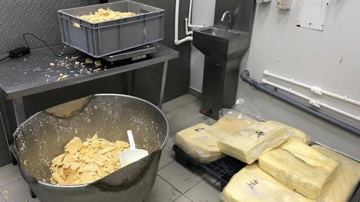 Как правильно выбрать плавленый сыр: Новое исследование Роскачества окончится в марте