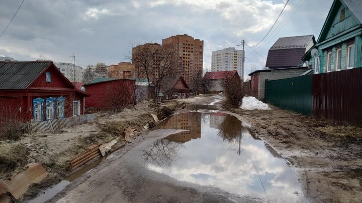 Пять экологических ошибок мэрии Владимира, которые делают город грязным и неуютным