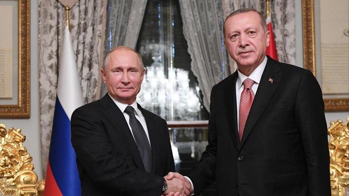 Ну ты и... турок: Путин принимает Эрдогана — прямая трансляция