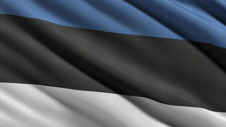 Эстония готовится к войне: В военном ведомстве республики забыли уточнить, с кем именно