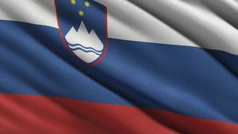 В Словении и Словакии премьеры подали в отставку