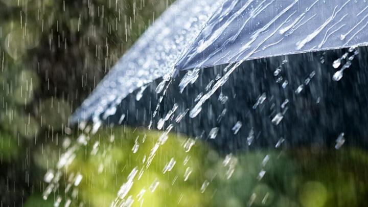 Надвигаются сильные дожди и грозы: В Сочи прогнозируют ухудшение погоды