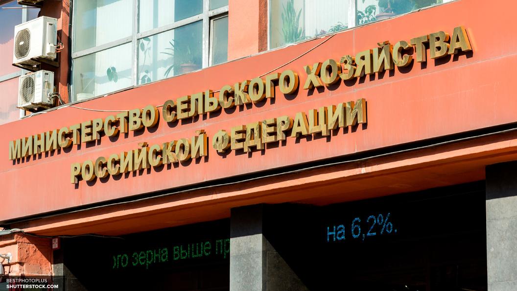 Ткачев: Россия в будущем может занять до 15 процентов мирового рынка экопродуктов
