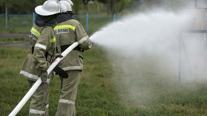 В Геленджике ликвидировали возгорание лесной подстилки на площади 1,6 Га