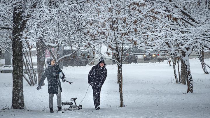 Не сумасшедший, но всё-таки: Вильфанд рассказал о надвигающемся на Москву снегопаде