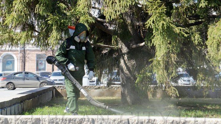 Опасно для здоровья: курганцев попросили три дня не ходить в парки