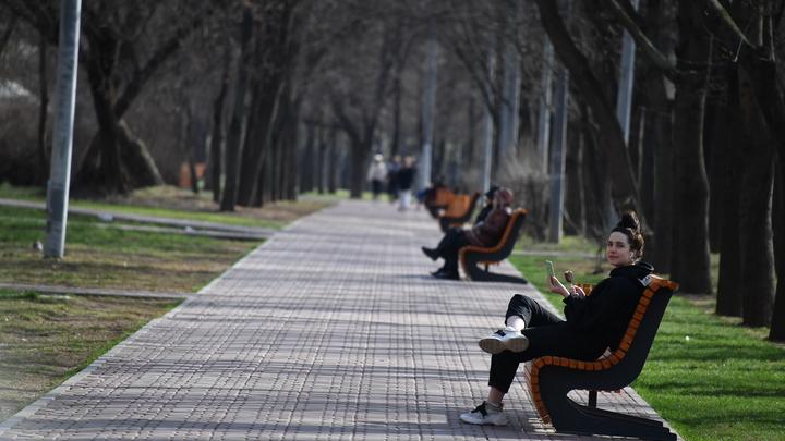 Покусали восьмерых: в Петербурге активизировались клещи