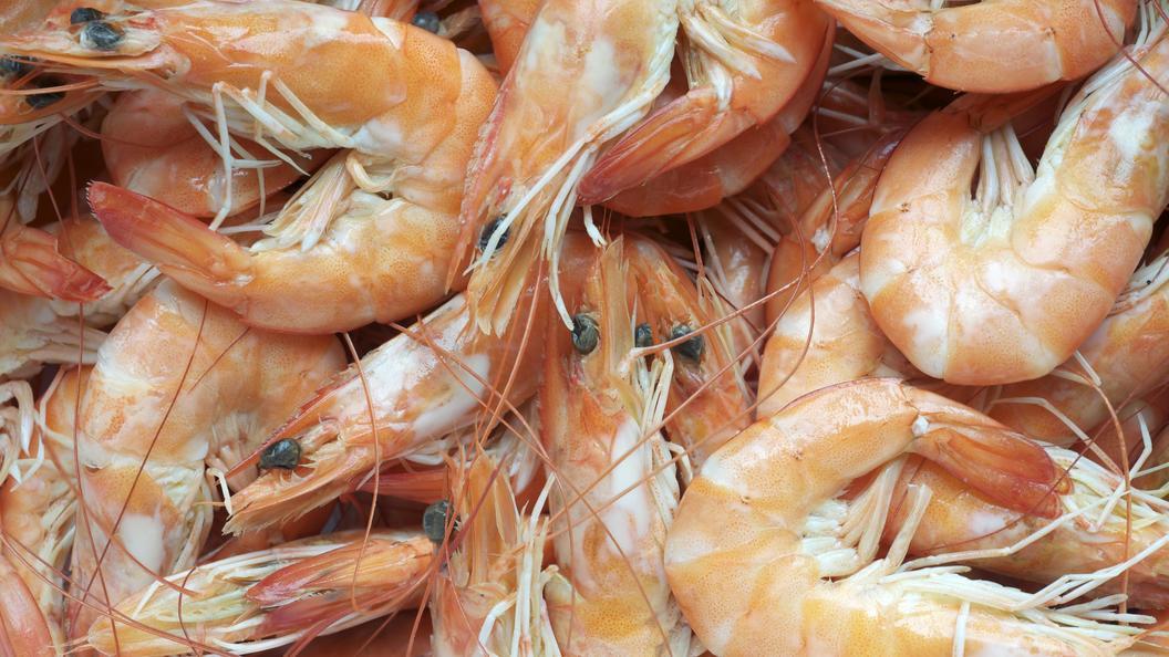 Впоставляемых в РФ изВьетнама креветках отыскали мышьяк