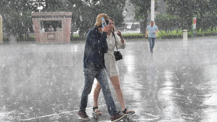 Синоптики пообещали дожди и порывистый ветер на выходных в Новосибирске