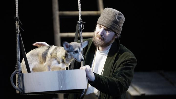 В МДТ Петербурга ищут собаку на роль Муму