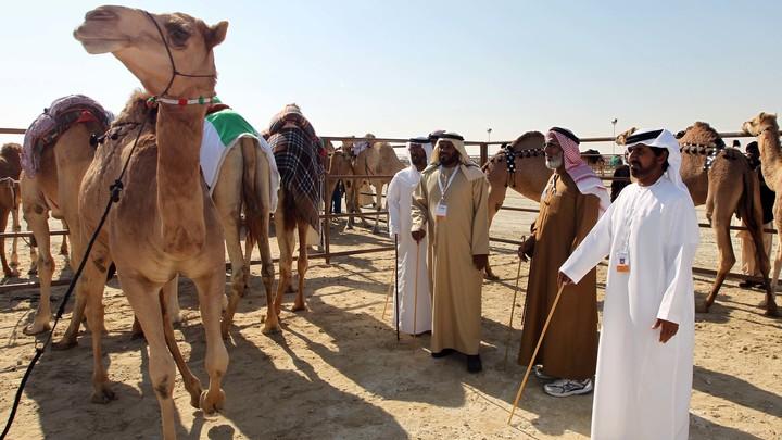 Опальные саудовские принцы отдали в казну 100 млрд долларов