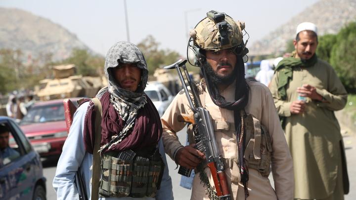 Первая пресс-конференция талибов*: 8 главных тезисов