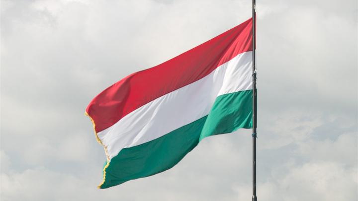 «Хватит ставить палки в колеса»: Венгрия требует от ЕС не тормозить «Турецкий поток»